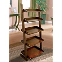 Furniture of America CM-AC293 Lugo Ladder Shelf Display