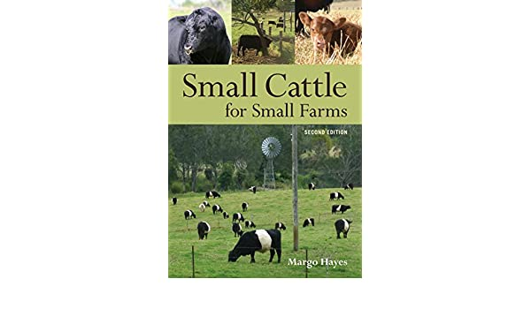 Amazon com: Small Cattle for Small Farms eBook: Margo Hayes