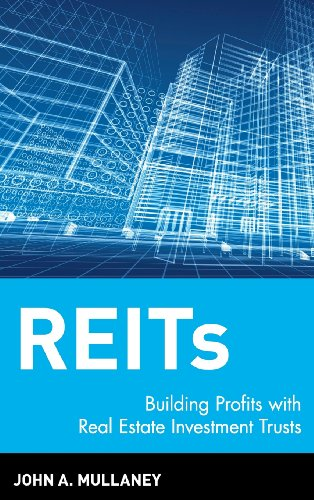 REITs: Building Profits with Real Estate Investment Trusts by John A Mullaney