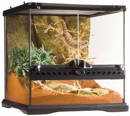B000OAVN0W Exo Terra Glass Reptile Terrarium, 12 by 12 by 12 inch 51sZvKGpG7L.