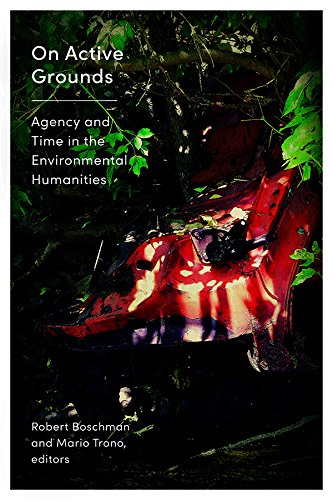 On Active Grounds: Agency and Time in the Environmental Humanities