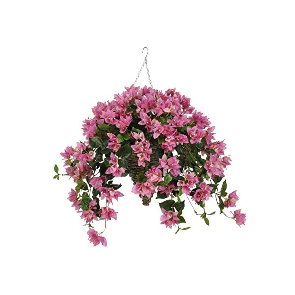 House of Silk Flowers Artificial Orchid Pink Bougainvillea in Beehive Hanging Basket