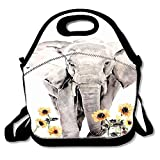 Best GENERIC Friend Lunch Boxes - Designer Insulated Lunch Bag Tote Reusable Waterproof School Review