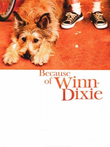 Winn-Dixie – Mein zotteliger Freund Film