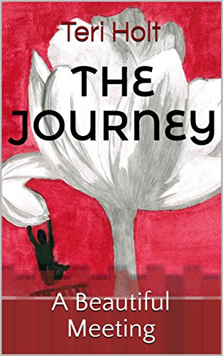 The Journey: A Beautiful Meeting (English Edition)