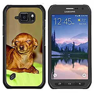 LECELL--Funda protectora / Cubierta / Piel For Samsung Galaxy S6Active Active G890A -- Escéptico Chihuahua Canine Pet canina --