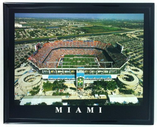 Miami Dolphins Aerial Pro Player Stadium Wall Art Print F7517A ()