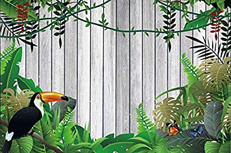 Amazon Com Laeacco Summer Tropical Leaves Toucan Backdrop 10x8ft