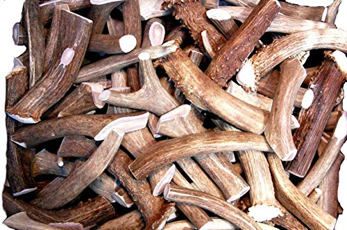 Premium Deer Antler Pieces - Dog Chews - Antlers by The Pound, One Pound - Six Inches or Longer - Medium, Large and XL - Happy Dog Guarantee!]()