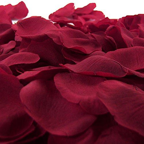 1000 flower petals - 1