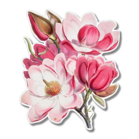 Art Sticker Bumper - Beautiful Pink Magnolia Vinyl Sticker - Car Window Bumper Laptop - SELECT SIZE