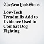 Low-Tech Treadmills Add to Evidence Used to Combat Dog Fighting | Sarah Maslin Nir