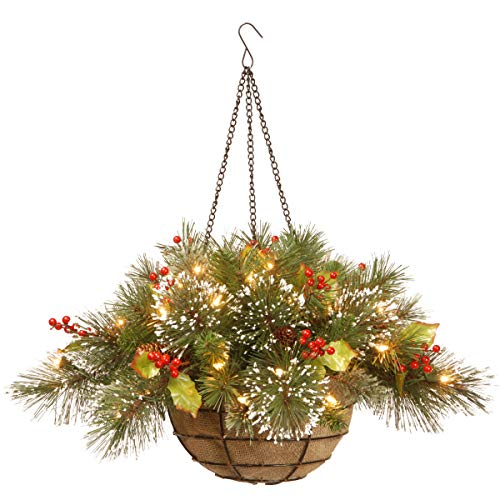National Tree 20 Inch Wintry Pine Hanging Basket with Branch Sprigs, Red Berries, Cones and 35 Battery Operated Warm White LED Lights (WP1-388-20HB-1) (Baskets Hanging Lighted)