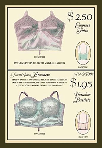 Buyenlarge Empress Satin and Paradise Batiste Brassieres - Gallery Wrapped 28