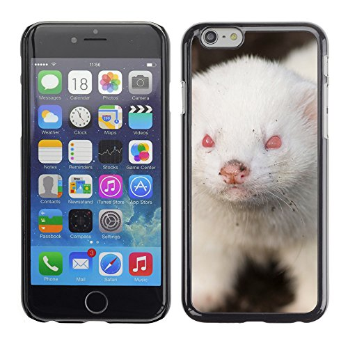 "Premio Sottile Slim Cassa Custodia Case Cover Shell // V00002853 furet albinos // Apple iPhone 6 6S 6G 4.7"""