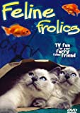 Feline Frolics: TV Fun For Your Cat (Cat Entertainment DVD)