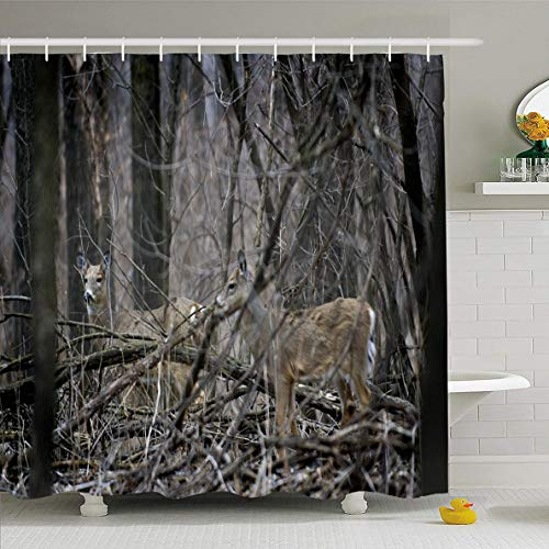 Ahawoso Shower Curtain 72x78 Inches Creature Forest Pair White Tailed Deer Odocoileus Virginianus Camouflaged Camo Nature Alert Beast Waterproof Polyester Fabric Set with Hooks