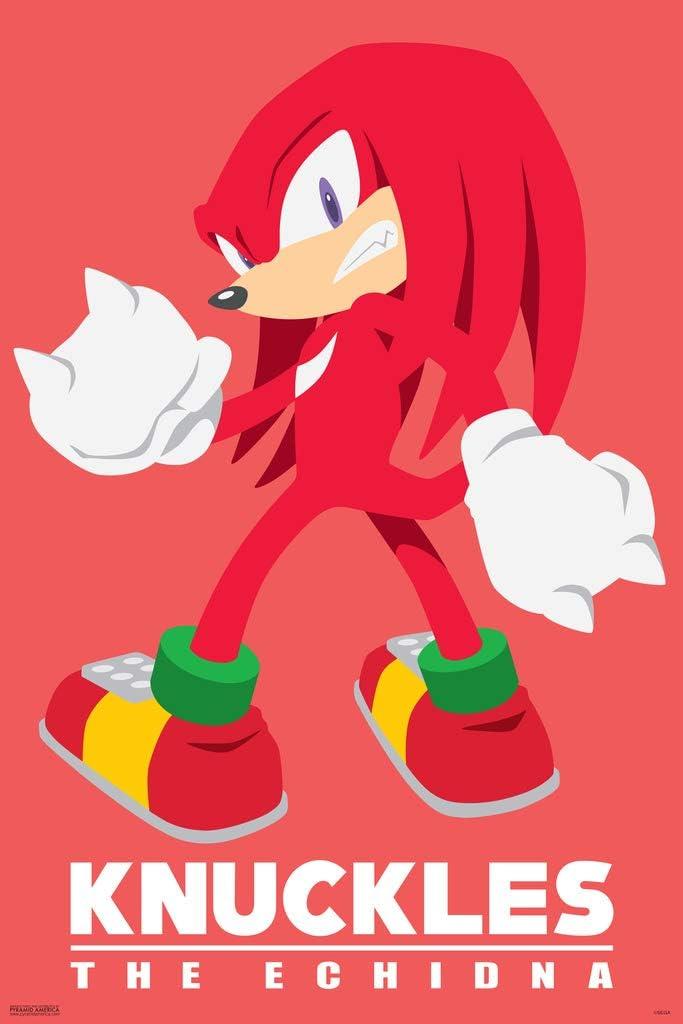 Pyramid America Sonic The Hedgehog Knuckles Sega Video Game Gaming Cool Wall Decor Art Print Poster 12x18