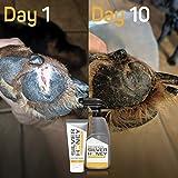 Absorbine Silver Honey Hot Spot & Wound Care 2oz