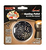 Gamo LETHAL .177CAL QTY100 BLISTER 632274054