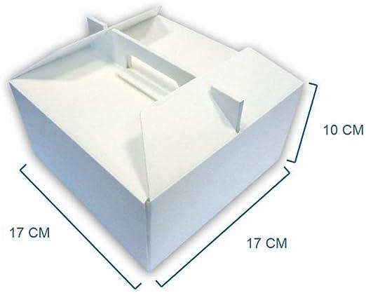 BOX GEL Unidades 10 Caja para Pasteles y Tartas Helado cm 17 x 17 Alta cm 10 Recipiente Térmico para Llevar de Semi Fríos: Amazon.es: Hogar