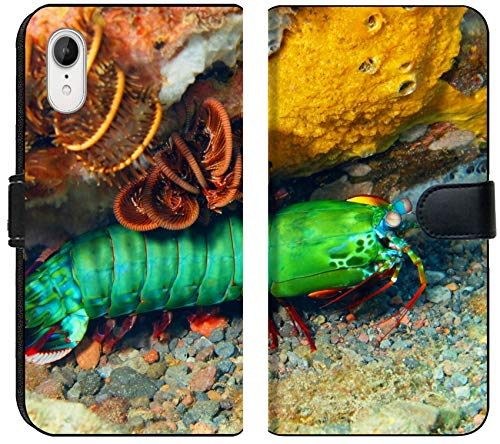Luxlady iPhone XR Flip Fabric Wallet Case Image ID: 34031412 Mantis Shrimp Island Bali Tulamben