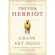 Grass, Sky, Song: Promise And Peril In World Of Grassland Birds