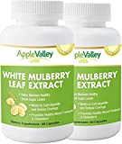 Pure White Mulberry Leaf Extract Premium 500mg | Natural High & Low Blood