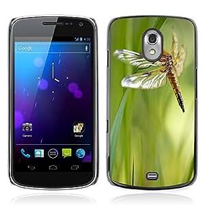 Super Stella Slim PC Hard Case Cover Skin Armor Shell Protection // M00105053 Libellula Quadrimaculata Dragonfly // Samsung Galaxy Nexus GT-i9250 i9250