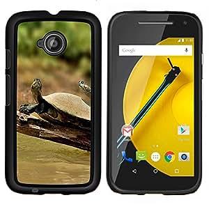 Caucho caso de Shell duro de la cubierta de accesorios de protección BY RAYDREAMMM - Motorola Moto E2 E2nd Gen - Tortuga Soleado Verano Tropical