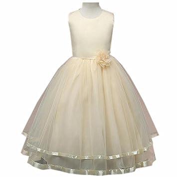 Wgwioo Ropa De Niños Princesa Las Muchachas De Flor Vestido Tul De La Boda Desfile Dama
