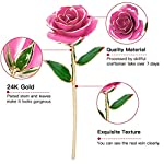 NICEAO-Gold-Rose-24K-Artificial-Flowers-Dipped-Rose-Gold-Plated-Rose-with-Transparent-Stand-for-Lover-Mother-Girlfriend-Gold-Dipped-Rose-Pink