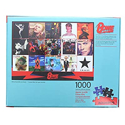 David Bowie Puzzle: Toys & Games