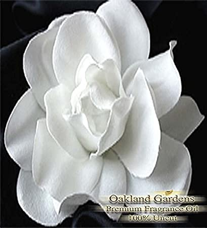 Amazon white gardenia flowers fragrance oil gorgeous notes of white gardenia flowers fragrance oil gorgeous notes of white gardenias with petals of ylang and mightylinksfo