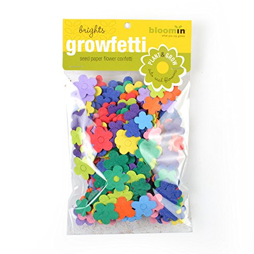 Bloomin Seed Paper Shape Packs product image