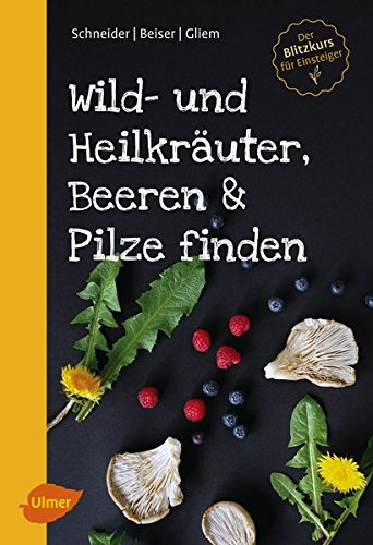 wild-und-heilkruter-beeren-und-pilze-finden-der-blitzkurs-fr-einsteiger