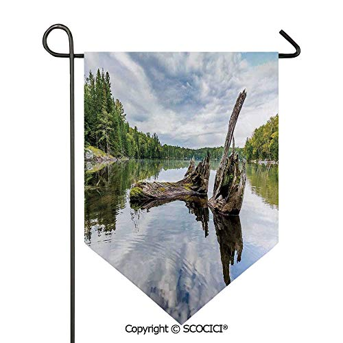 SCOCICI Easy Clean Durable Charming 28x40in Garden Flag Remains of a White Cedar Tree Trunk in Lake and The Sky Image,Green Light Grey Double Sided Printed,Flag Pole NOT Included