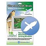 Songbird Essentials SE7015 WindowAlert Hawk