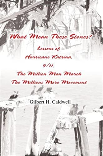 What Mean These Stones?: Lessons of Hurricane Katrina, 9/11, The Million Man March The Millions More Movement by Gilbert Caldwell (2005-11-23)