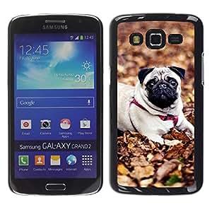TopCaseStore / la caja del caucho duro de la cubierta de protección de la piel - Pug Autumn Pet Dog Leaves Nature - Samsung Galaxy Grand 2 SM-G7102 SM-G7105