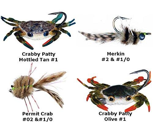 Permit Crab - 3