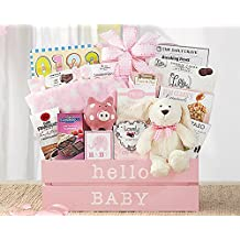 Wine Country Gift Baskets Welcome Home Baby Girl - Adorable Baby Basket for the Newborn and Her Fami