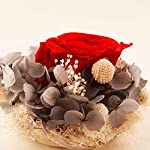 SANRAN-Forever-Flower-Preserved-Eternal-Real-Rose-Present-with-Led-Mood-Light-Best-Gift-for-Mothers-Day-Thanksgiving-Day-Birthday-Anniversary-Valentines-Day-Christmas-Skyfire-Max