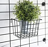 AceList Metal Wire Hanging Basket, Multifunctional Creative Mesh Wall Grid Holder Storage Organizer Plant Holder Shelf Flower Pots Black Coated
