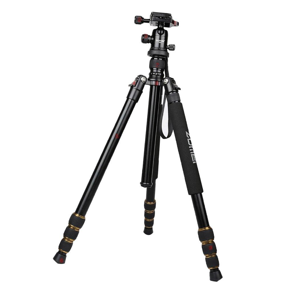 注文割引 fenteer Zomei B077TMWP9K q666 Professional Photographyアルミ三脚一脚キットwithパンヘッドコンパクト旅行for DSLRカメラ q666 DSLRカメラ B077TMWP9K, Anniversary Style:6055aeca --- movellplanejado.com.br