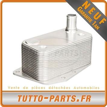 Radiador de aceite BMW Serie 1 3 5 X3