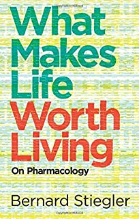 Historical Capitalism With Capitalist Civilization Immanuel  What Makes Life Worth Living On Pharmacology