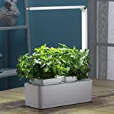 NASMTEC Newest Indoor Smart Fresh Flower Ports Automatic Growing Smart Mini Home Garden Plant Growth with Lamp