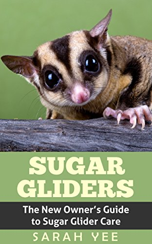 - Sugar Gliders: The New Owner's Guide to Sugar Glider Care (Sugar Glider, Sugar Glider Care, Sugar Glider Books, Sugar Glider Facts, Pet Sugar Glider Book 1)
