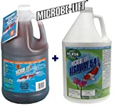 Microbe Lift PL Gallon + Microbe Lift Algaway Gallon Pond Water Treatment Duo